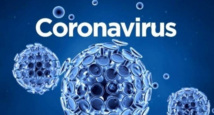 WHO To send Team To china To Investigate The Origin Of Coronavirus Pandemic.
